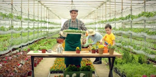 фермер вместе с семьей пытается вырастить урожай